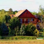 Miracle in Felcsut, Viktor Orban's home town