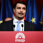 Hungarian Socialist Party (MSZP) suffers crushing defeat in 2014 EP election
