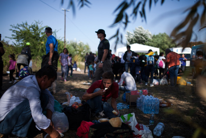 Volunteers distributing food and water to asylum seekers in the Serbian side of the border  Photo: Márton Magócsi