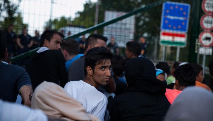 Help with asylum seeker essay?
