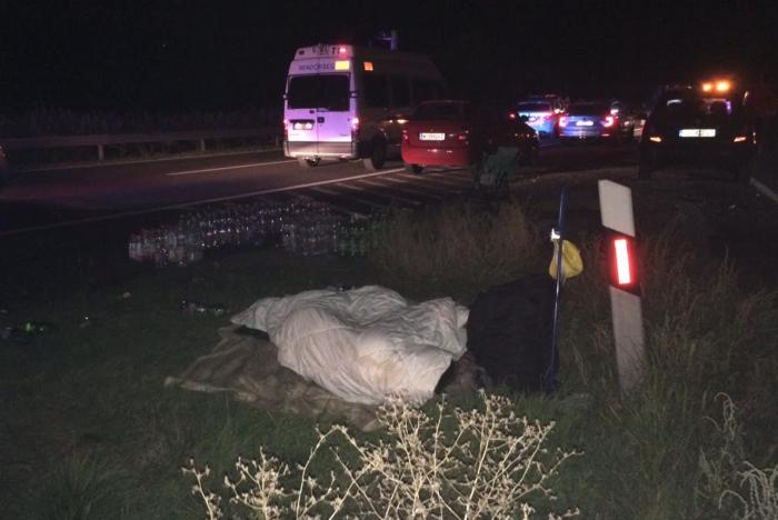 Herceghalom Hungary  city photo : Asylum seekers sleeping by the side of the M1 motorway. Photo: Ben ...