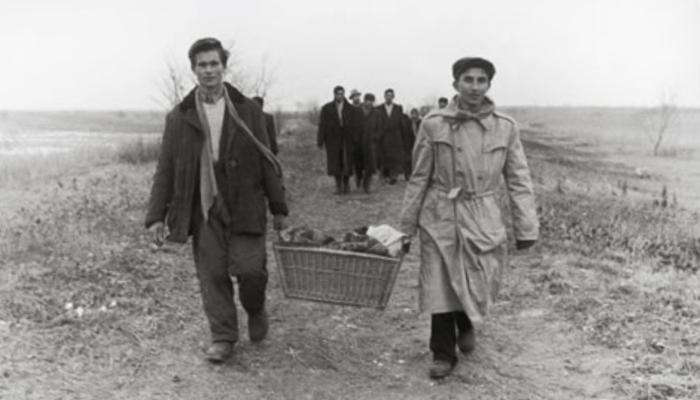 Hungarian asylum seekers arriving to Austria in 1956