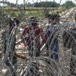 """Legislative border blockade"" further tightens Hungary's asylum policy against refugees"