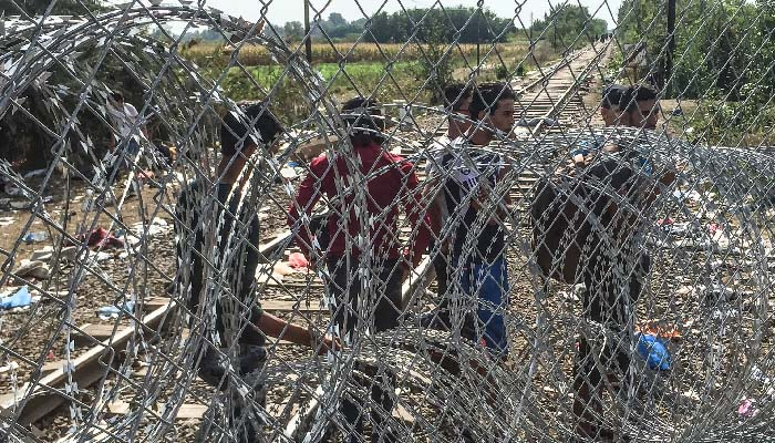 Asylum seekers  blocked from entering Hungary by barbed wire and three meter high chain link fence