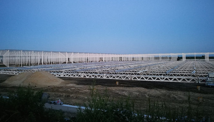 Glasshouses under construction in Burgenland. It's almostcertain that Hungarians will be working in these hothouses. Photo: Ádám Lestyánszky.