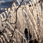 Hungary hit by record low temperatures