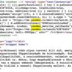 Russian code used to track access on gov't national consultation website