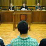 Prosecutors call for suspended prison sentence for lying court translator