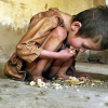 20,000 Hungarian children starving