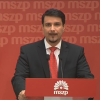 Attila Mesterhazy resigns as chairman of the Hungarian Socialist Party (MSZP)